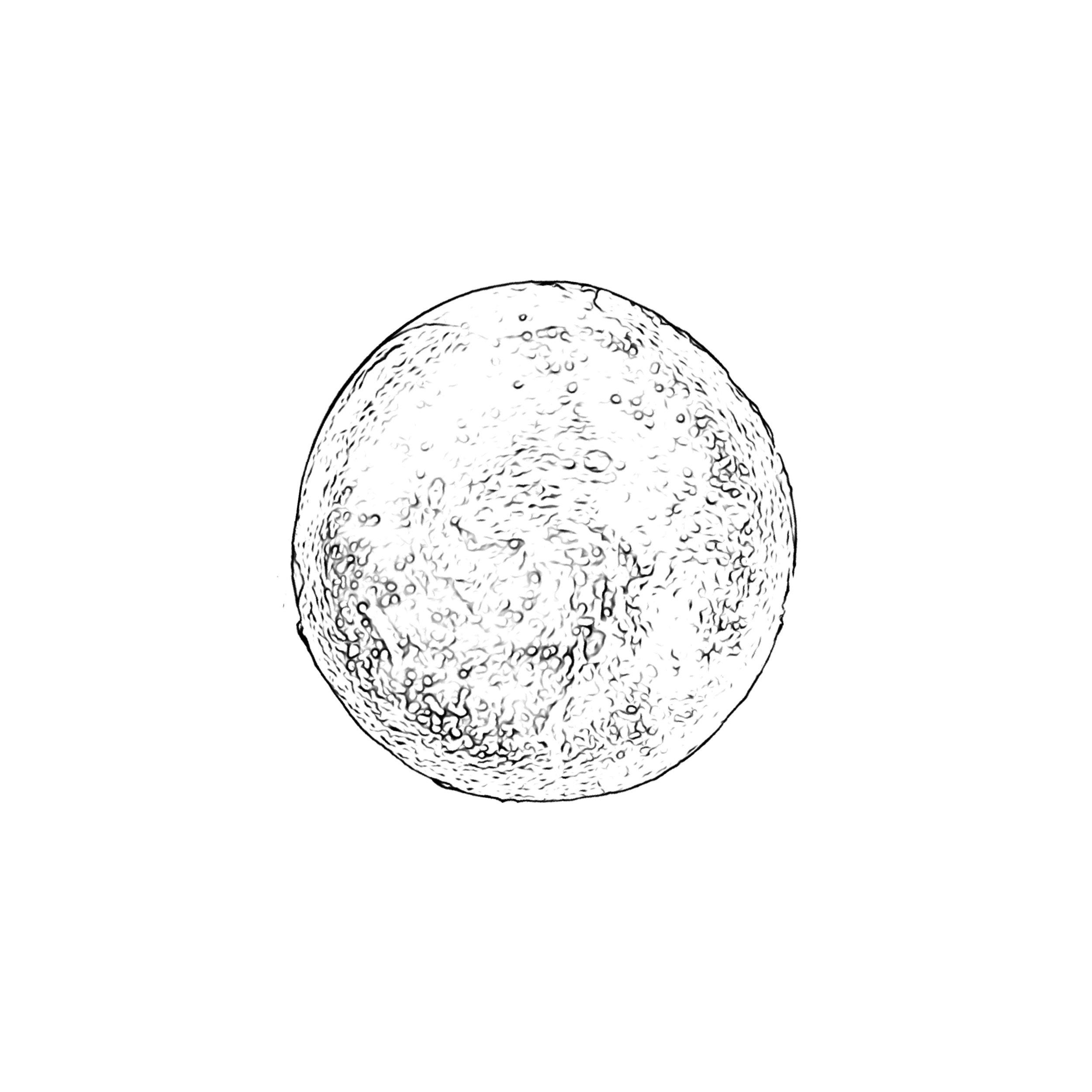 Rella Sketch 3.JPG