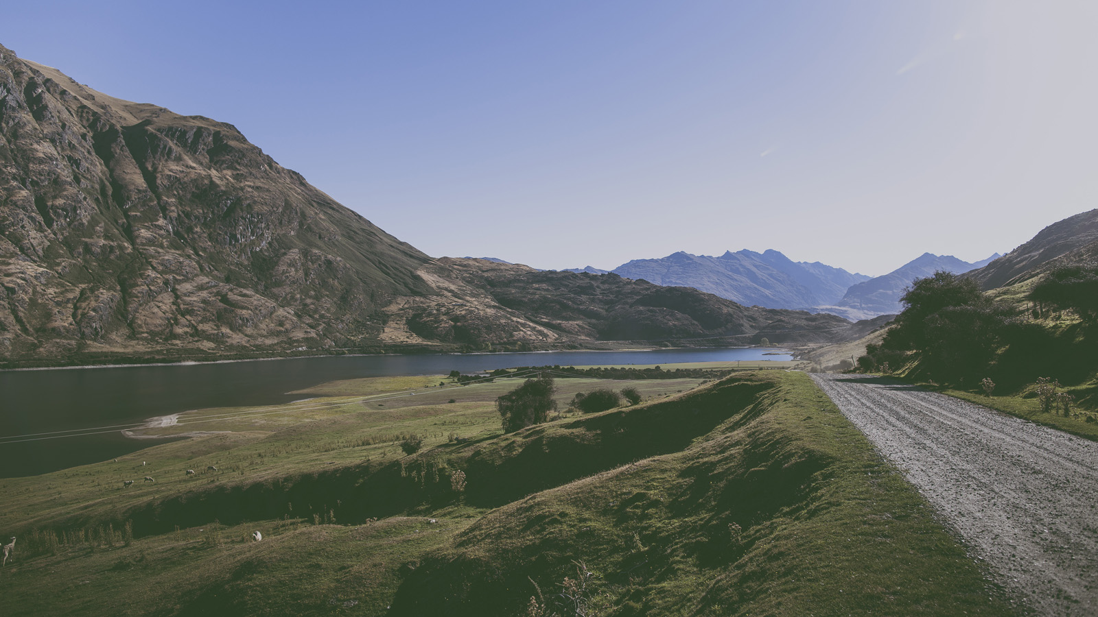 New Zealand Roadtrip_2014_0724