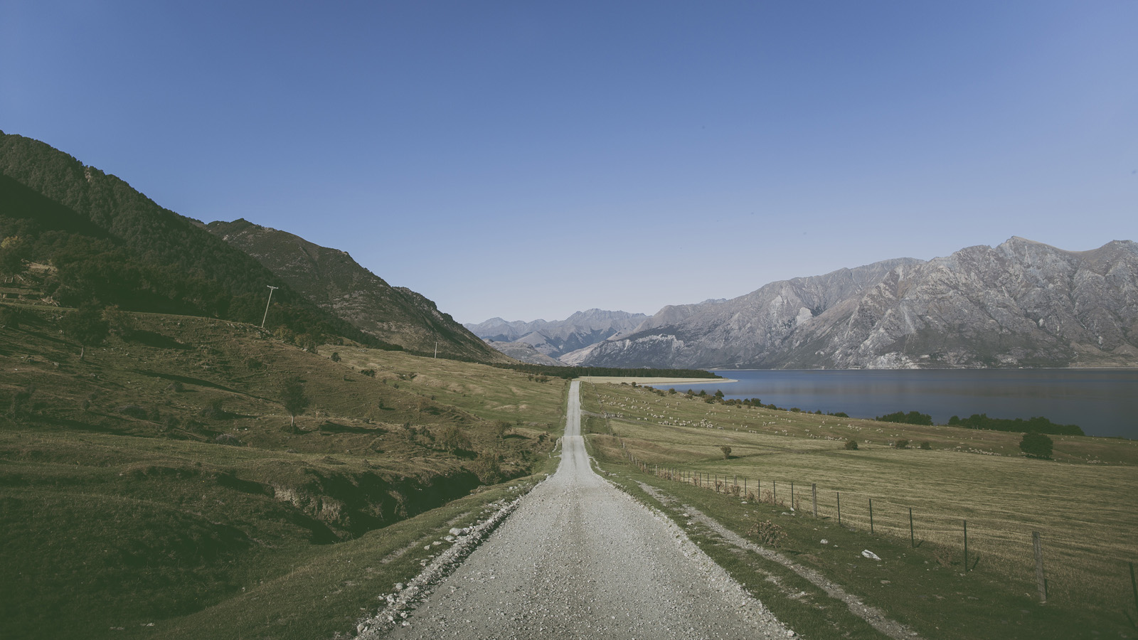 New Zealand Roadtrip_2014_0730