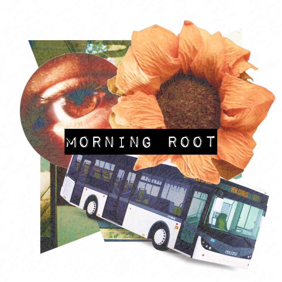Morning Root.jpg