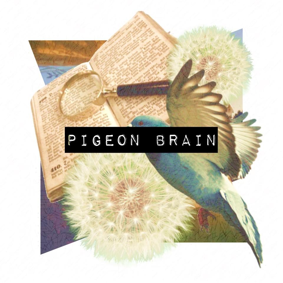Pigeon Brain.jpg