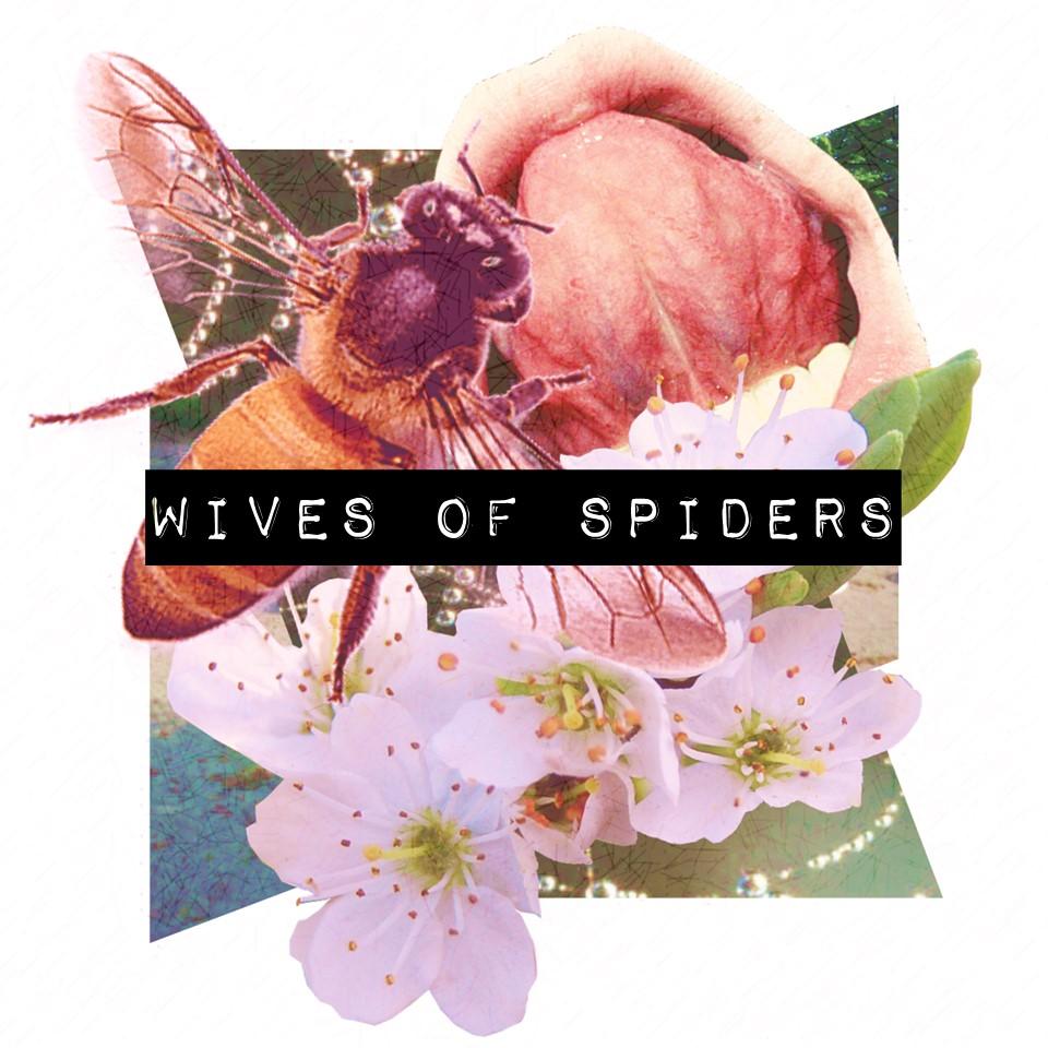Wives of Spiders.jpg