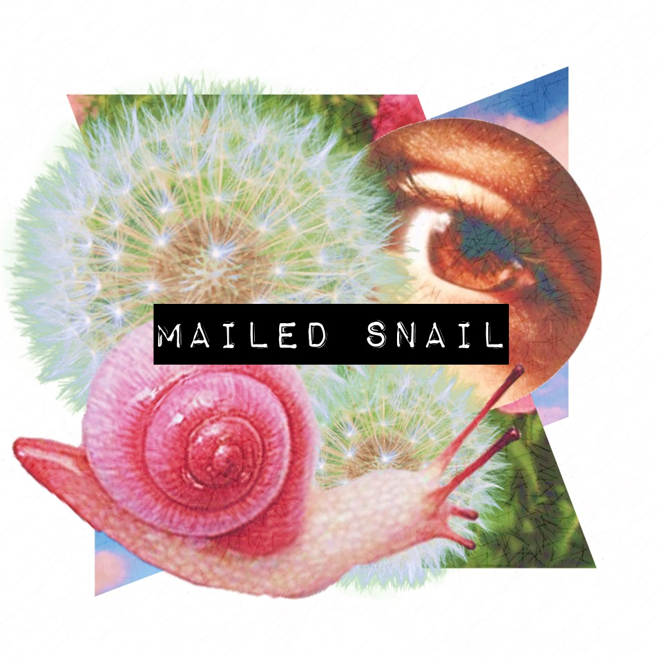 Mailed Snail.jpg