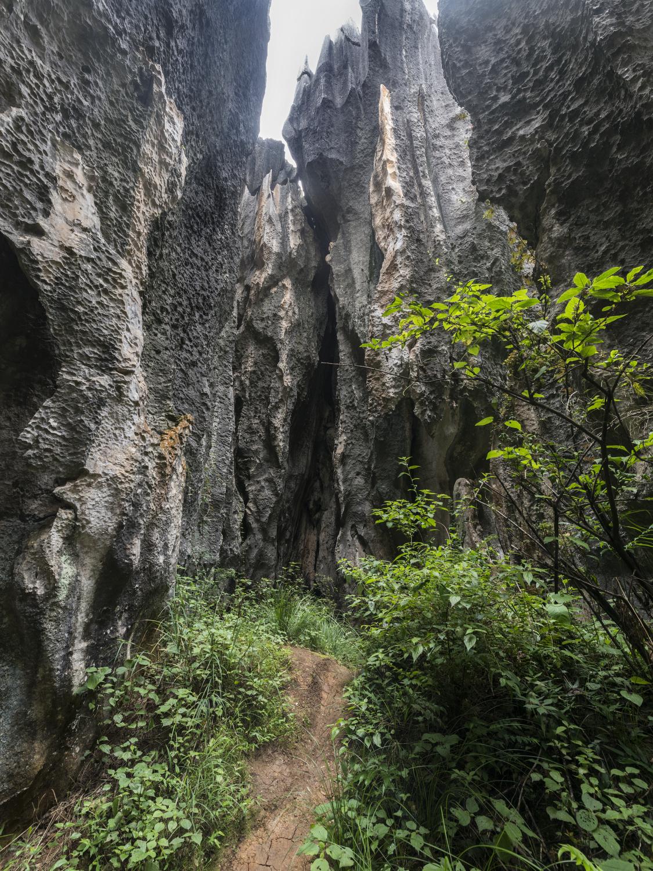 kunming21.jpg