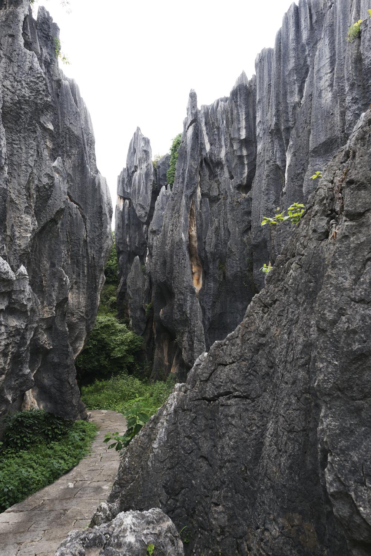 kunming19.jpg
