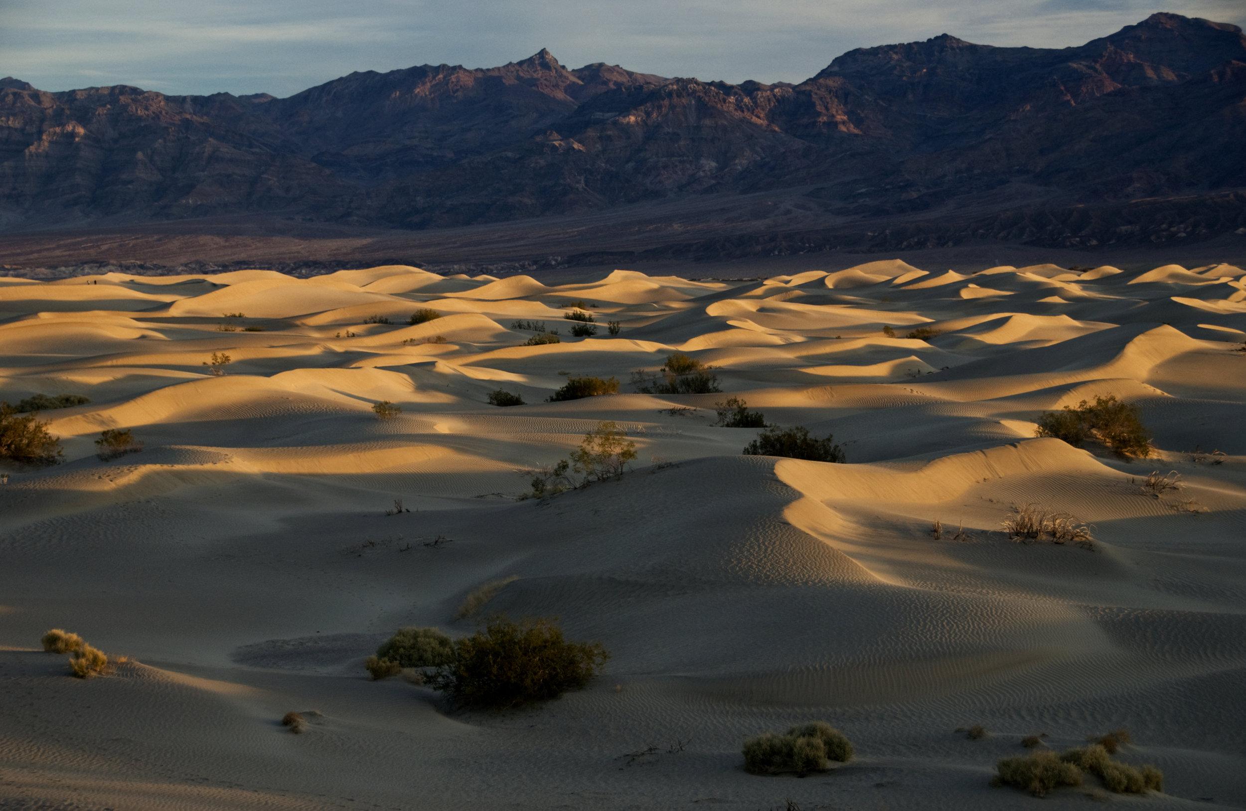 Stovepipe Wells Dunes