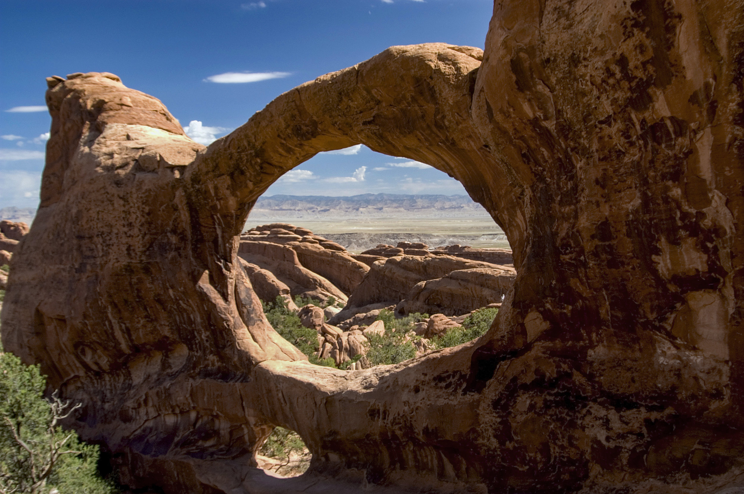 Double Window Arch