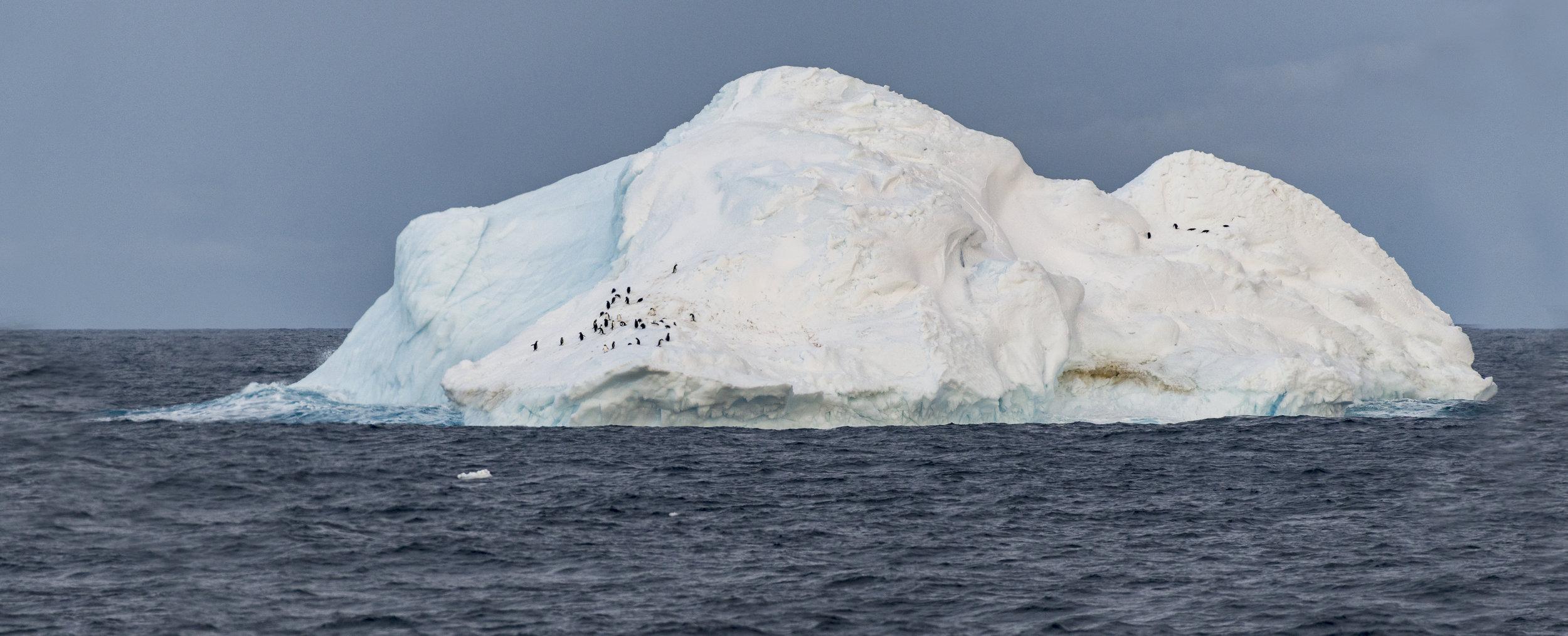 ice34.jpg