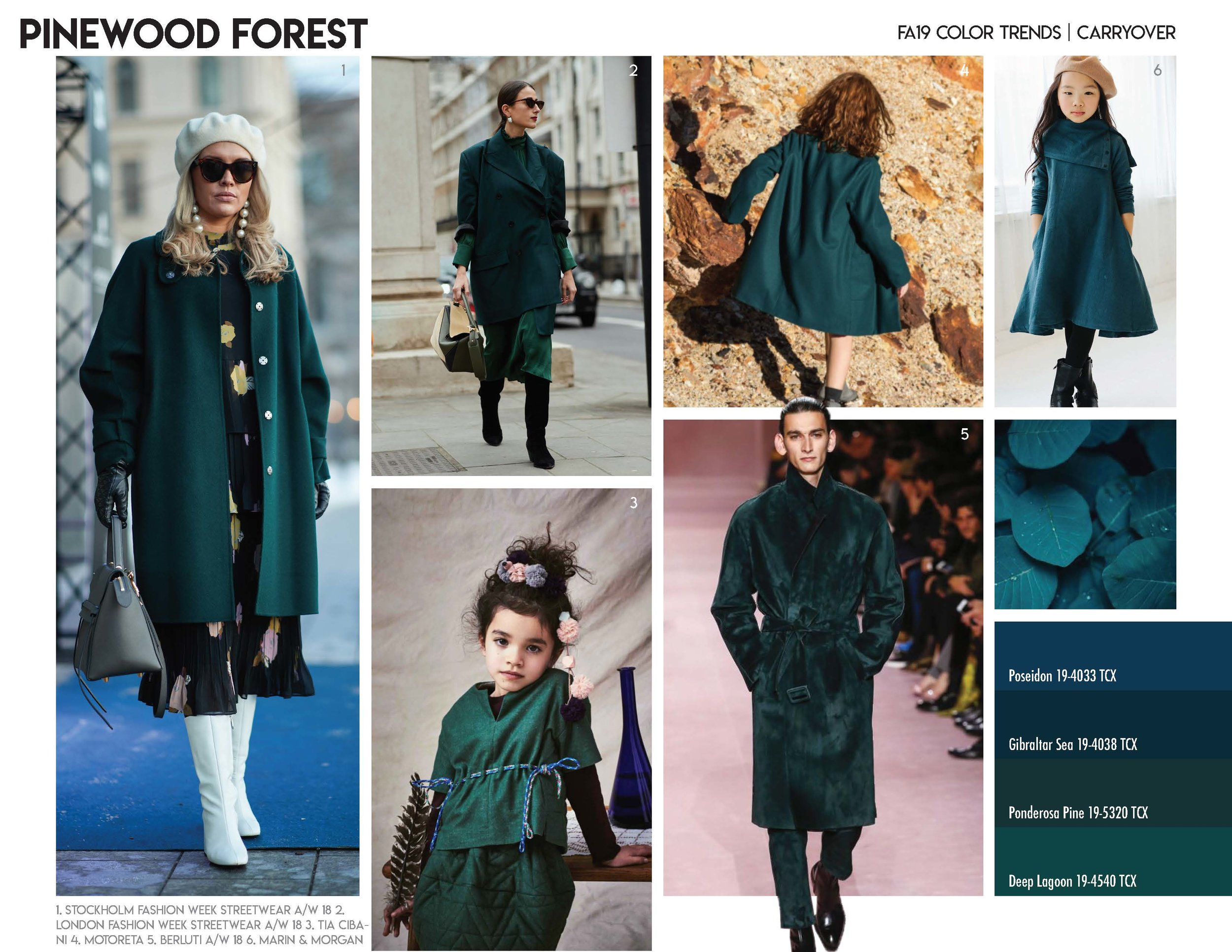 FA19 Color Trends_Page_06.jpg