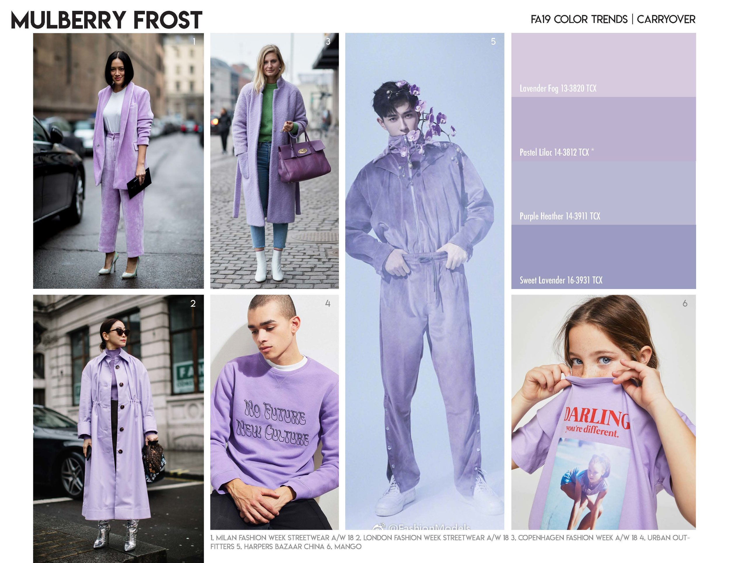 FA19 Color Trends_Page_14.jpg