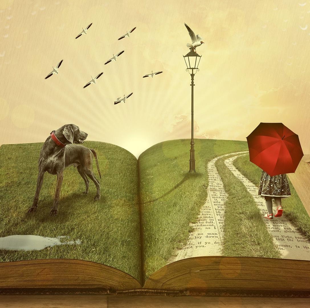 wordplay & learning -