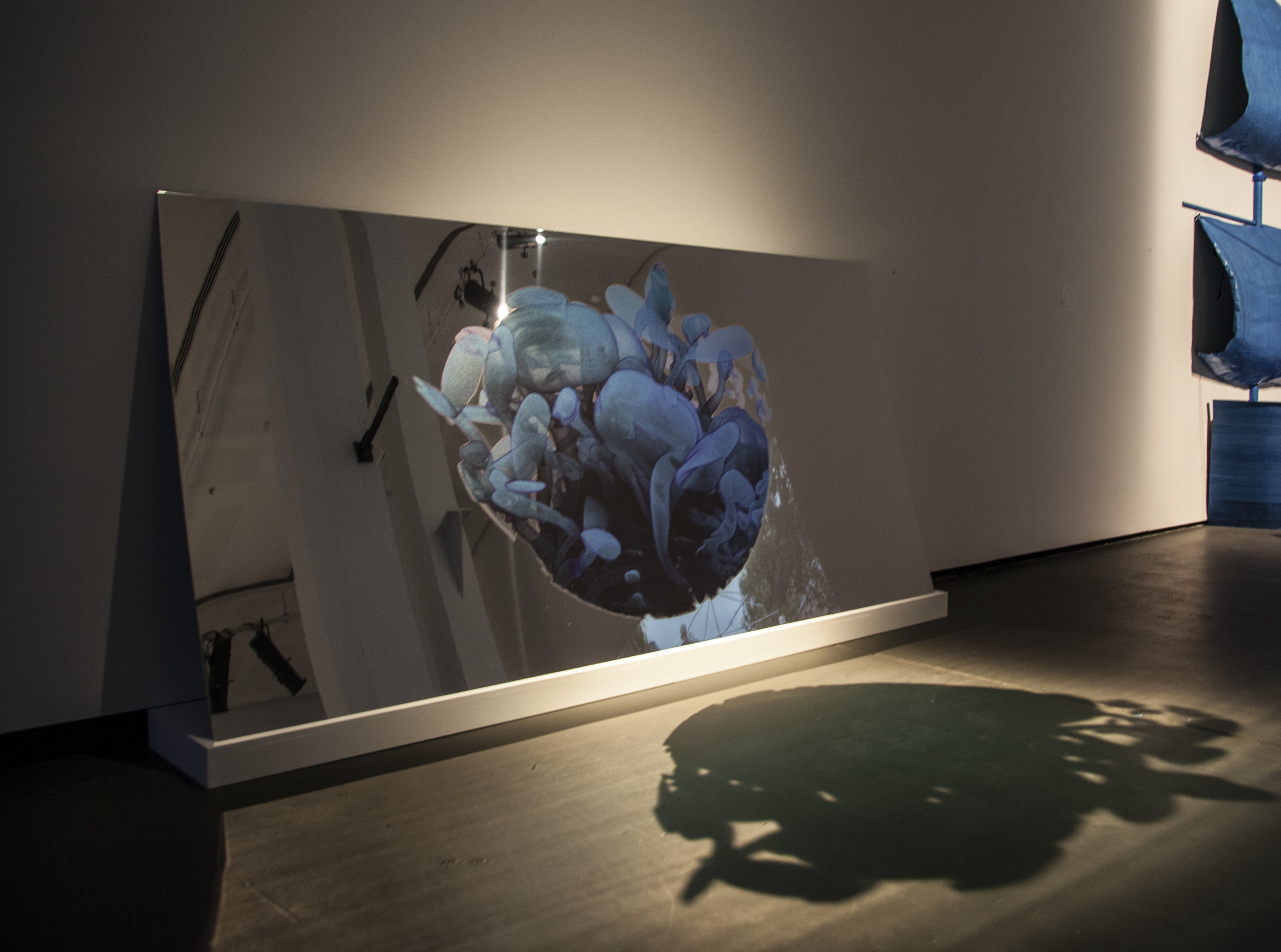 Erica Seccombe, Virtual Life , 2014, (installed in the exhibition) Solvent print on aluminium composite board, 1220 mm x 2400 mm. Winner inaugural Paramor Prize for Art + Innovation, 2015 Casula Powerhouse Art Centre Liverpool NSW.