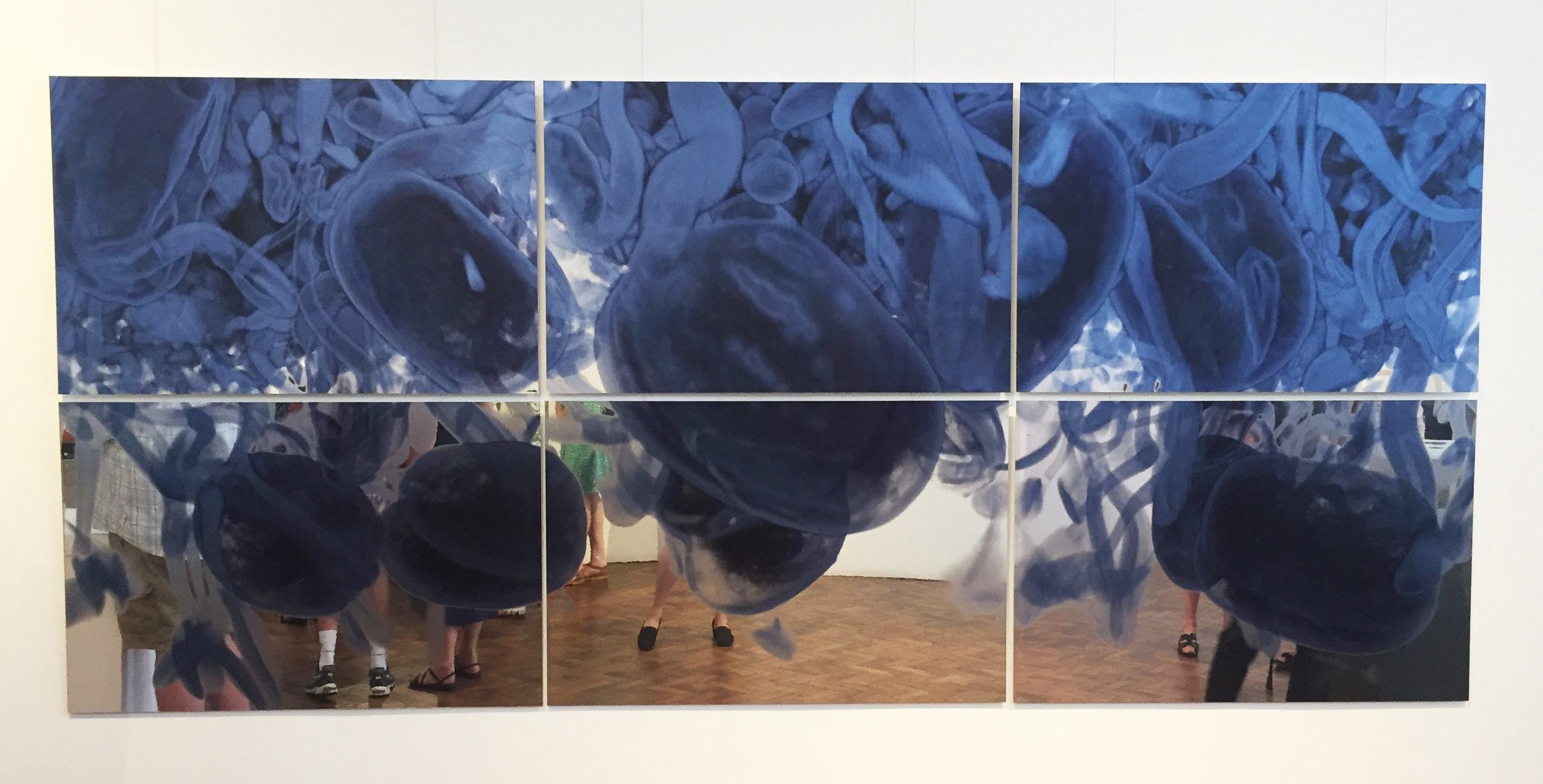 Erica Seccombe,  In Our Time , 2016, 6 panels, 3600 x 1600 mm,inkjet print mirrored aluminium, Photo curtesy Goulburn Regional Art Gallery 2017.