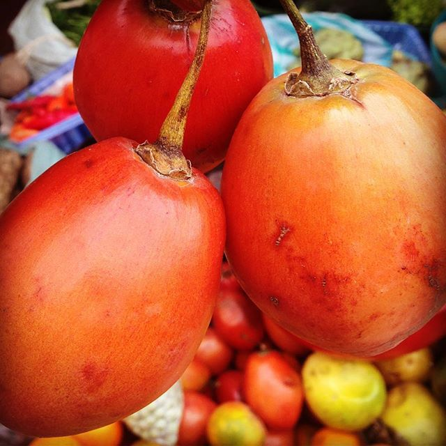 Throwback to the delicious juice of Tomato De Arbol 😋😋😋 I had in #colombia . . . #tamarillo #lolabcooks #food #foodie #foodofinstagram #chefofinstagram #foodporn #fitnessfood #foodies #chef #doctorwithpassions #doctorturnchef #foodismedicine #foodishealing #healing #london #londoner  #southlondon #medicine #doctor #fooddoctor #pasionpursuit  #africandiaspora #caribbean #african #london  #lovefood #foodheals #lovecooking