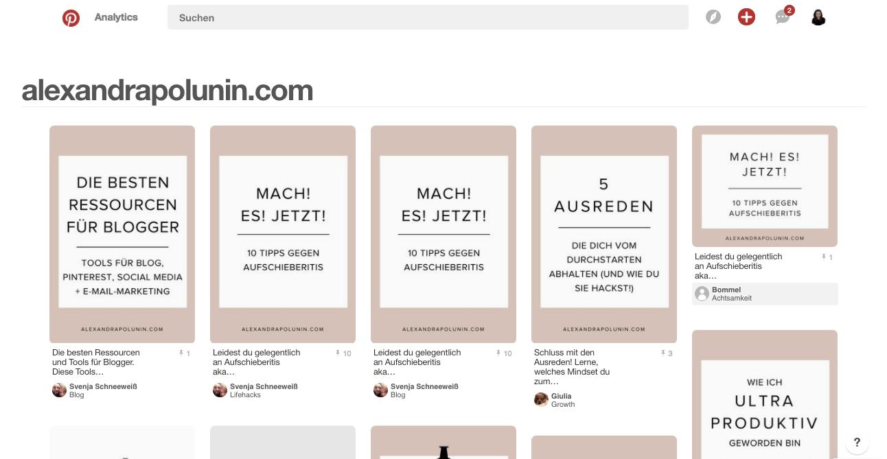 Pinterest Hacks – Wer pinnt von meiner Website.png