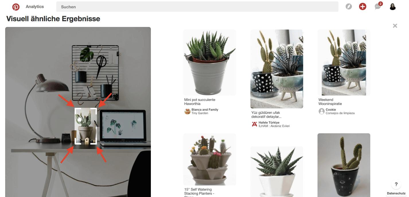 Pinterest Tricks Visuelle Suche.png