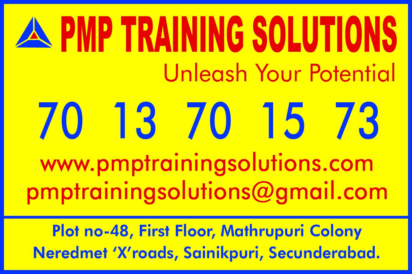 pmp training solutions....18 x 12..jpg