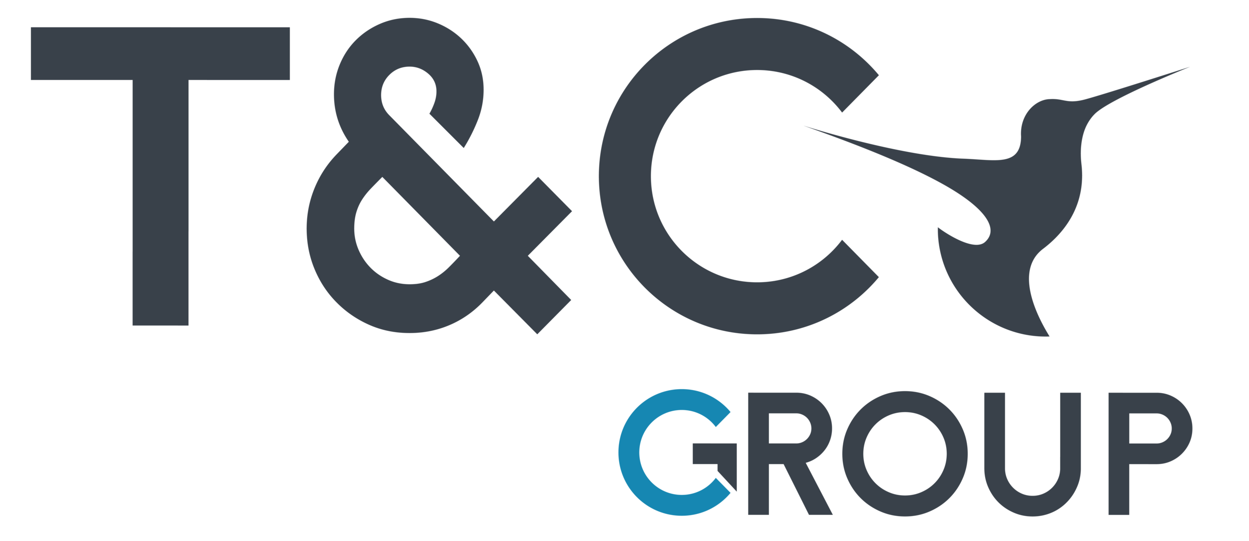Logo T&C Group-06.png