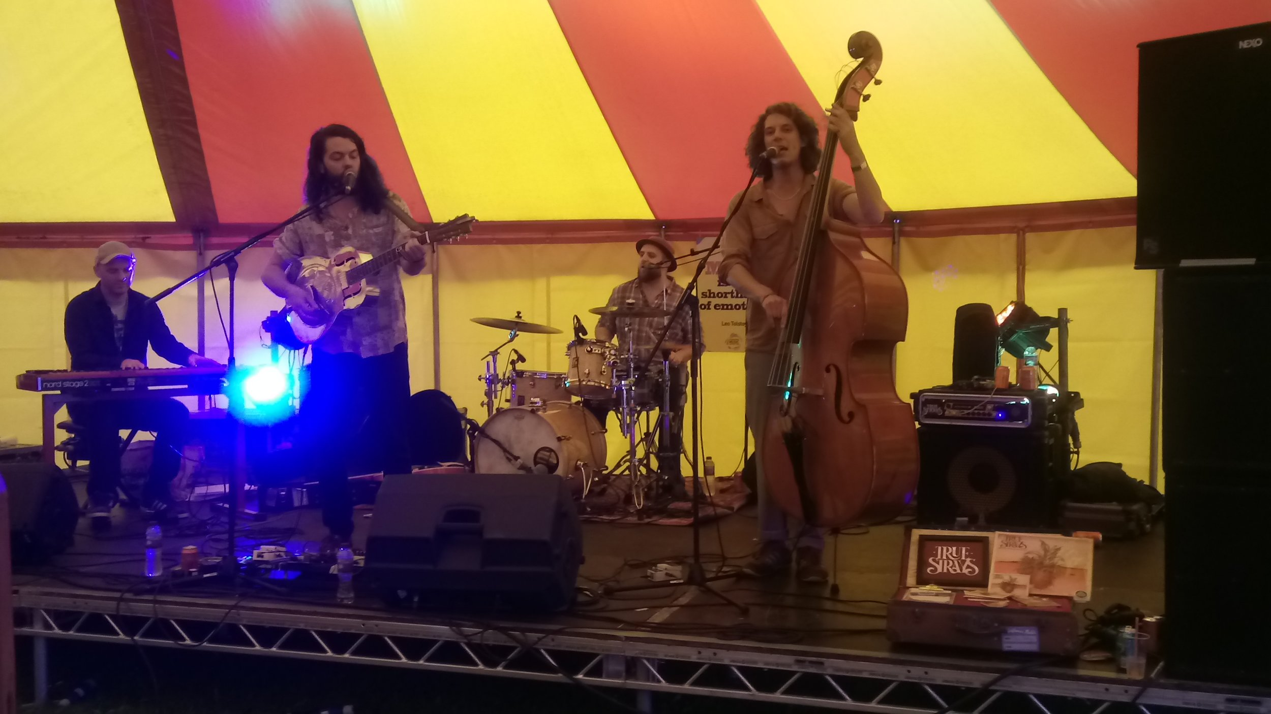 True Strays kicking up a storm at the Arlesford Music Festival