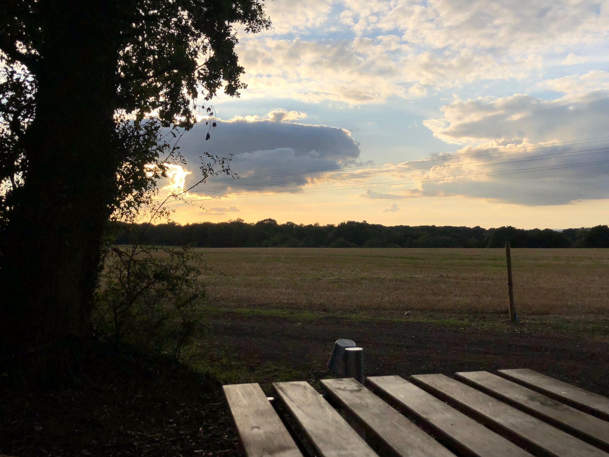Amazing views of the Hampshire countryside from The Pigsty verandah
