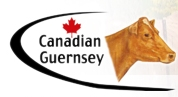 THE CANADIAN GUERNSEY ASSOCIATION -