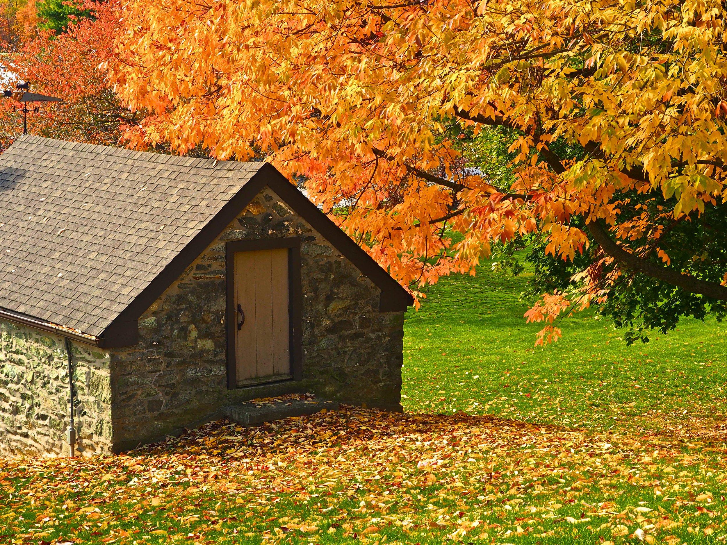 One of several preserved springhouses in East Goshen.