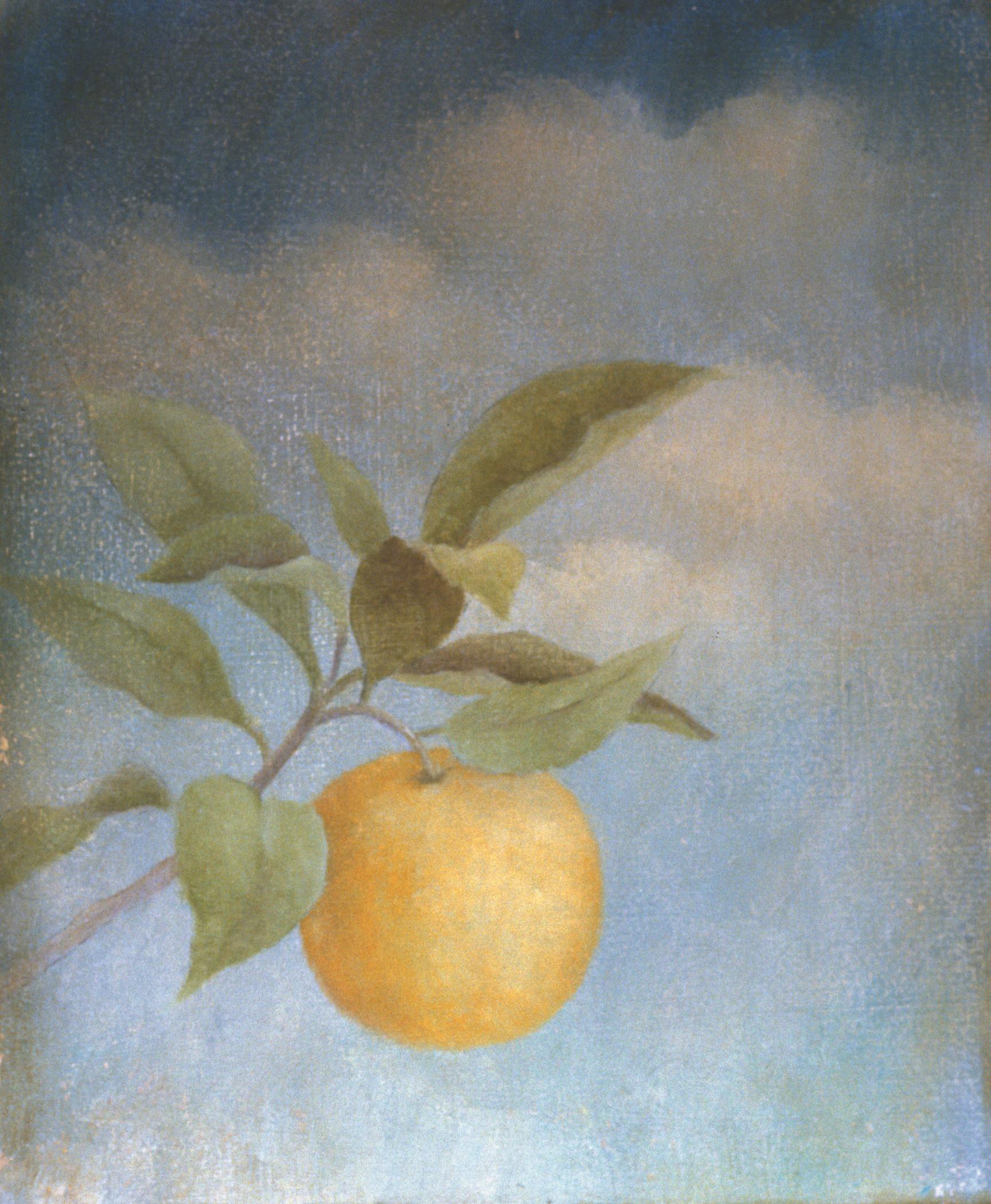 Fresco, Orange