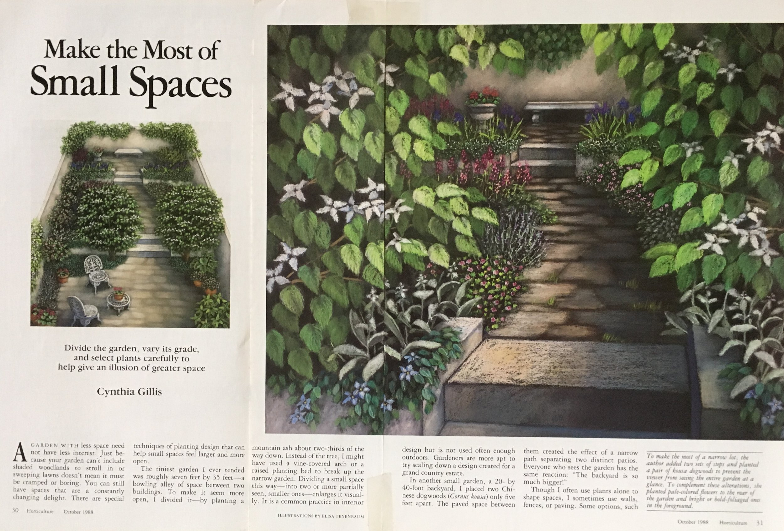 """""""Making the Most of Small Spaces"""" Horticulture Magazine"""