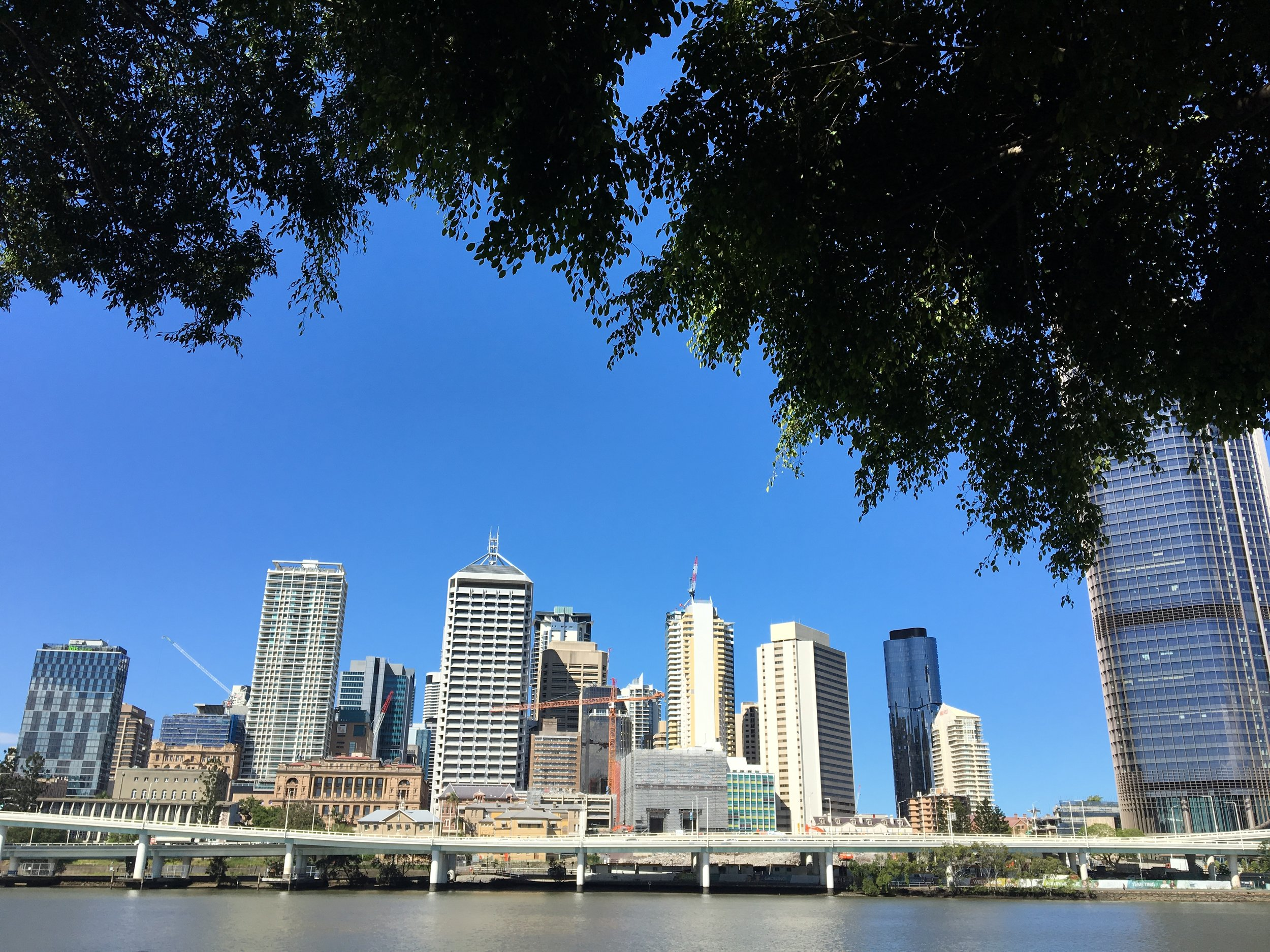 australia-brisbane-travel-southbank-promenade.JPG