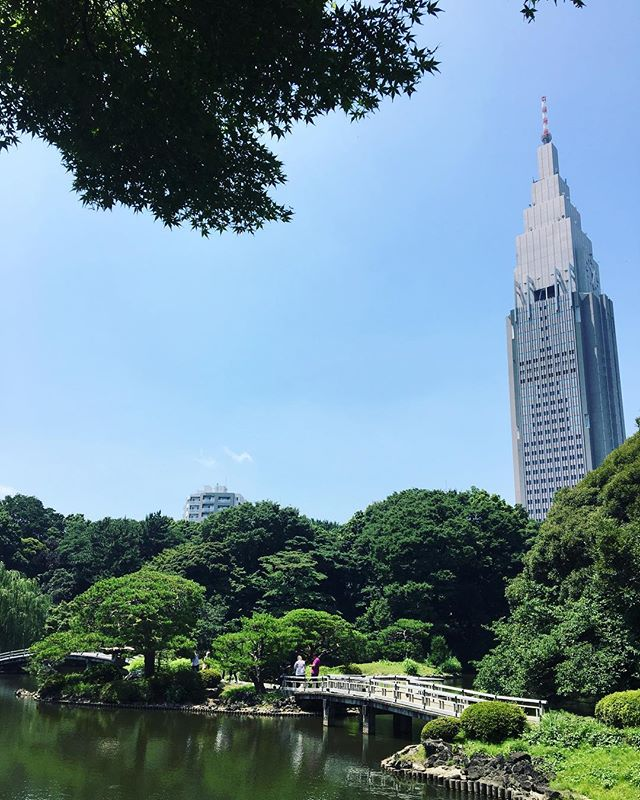 Tokyo Travel Tip #1: Check off #exploring + #quiettime with a morning walk around Shinjuku Gyoen while waiting for the shops to open!