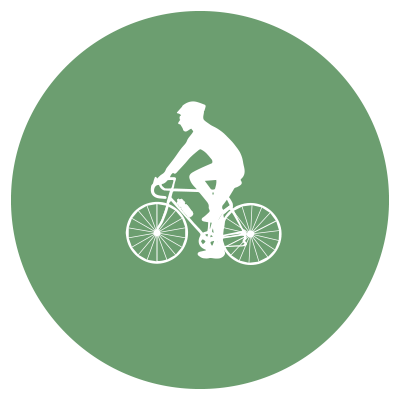 SA-blank-cycle.png