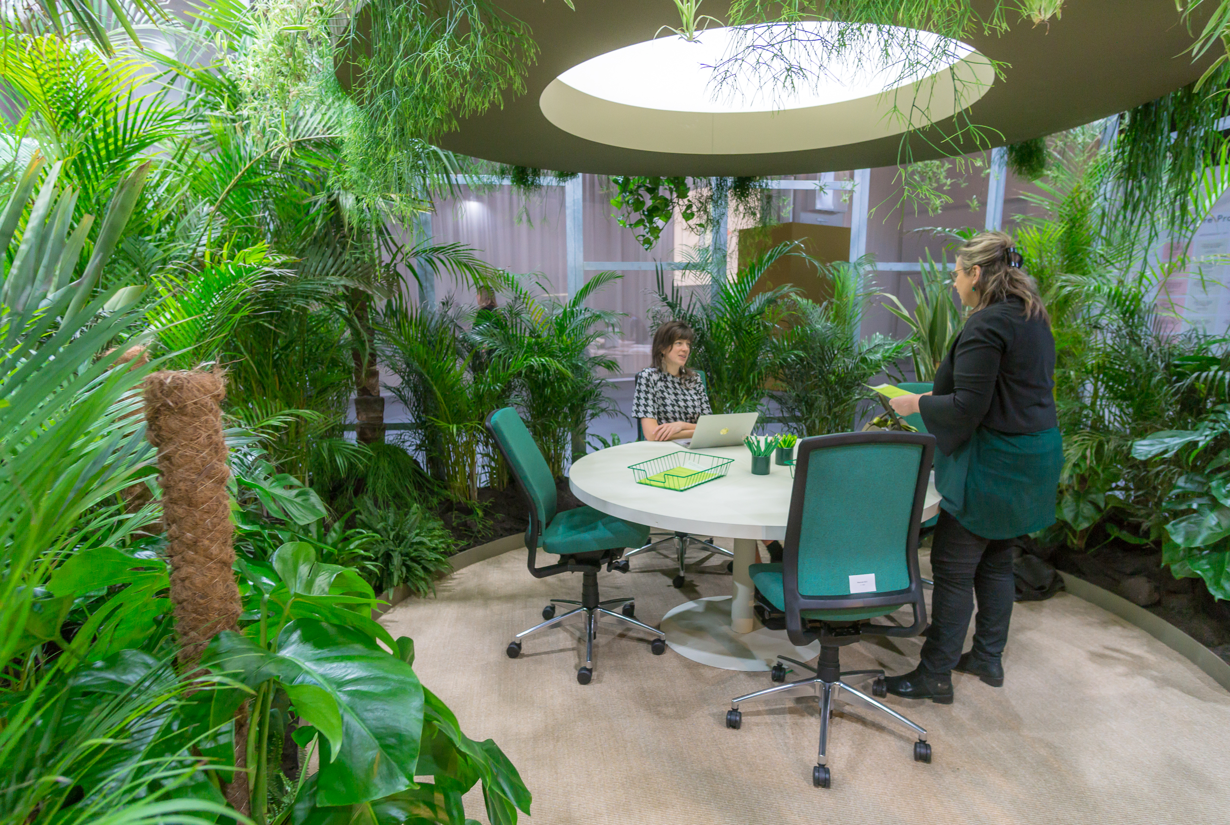 Green Workspace  According to the biophilia hypothesis, humans have an innate tendency to seek connections with nature. This is translating into design changes within the built environment. As we become more urban, designers, planners and city dwellers are seeking increasingly inventive ways to find a home for nature in the city. From the cultivation of house plants, window boxes and home mini ecosystems to allotments, pop-up green oases and even vast vertical gardens, contemporary city dwellers are striving to re-wild the city, one shrub at a time.  In working environments, it has been proved that biophilic design not only creates a cleaner, less toxic atmosphere, but also leads to an improved sense of wellbeing and greater levels of focus. Enhance your productivity and make use of the Green Workspace. Here you will find specially selected plants that purify the air.