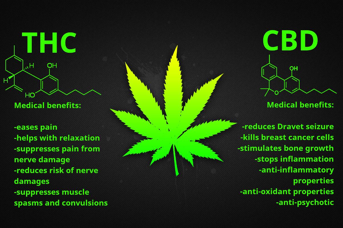 benefits-thc-cbd.jpg