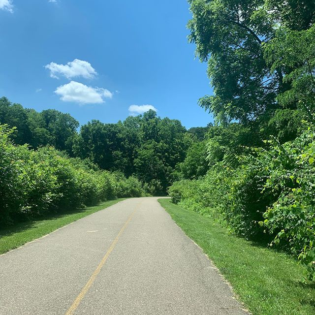 Oh hey-o, Ohio. You DO have sunny days. Good to know.  From my bike ride this morning. 🚲❤️