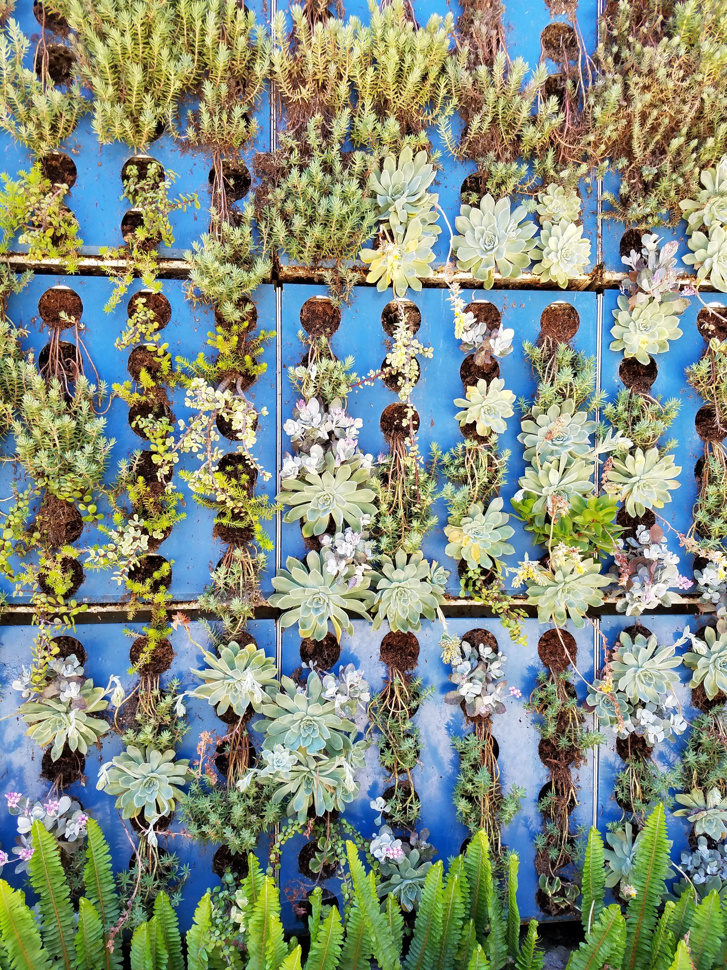 Vertical gardening does just that –Plants grow standing above one another.Typically they're grown in containers. -