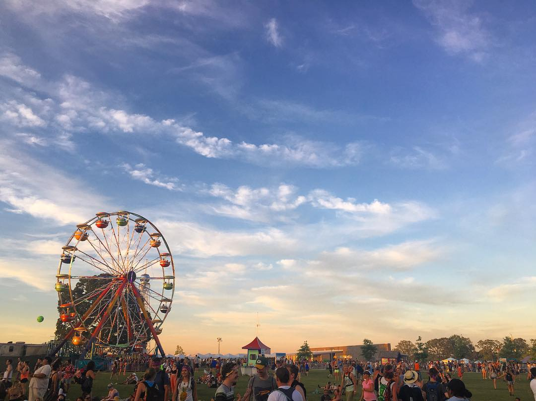 One of my many Bonnaroo pictures