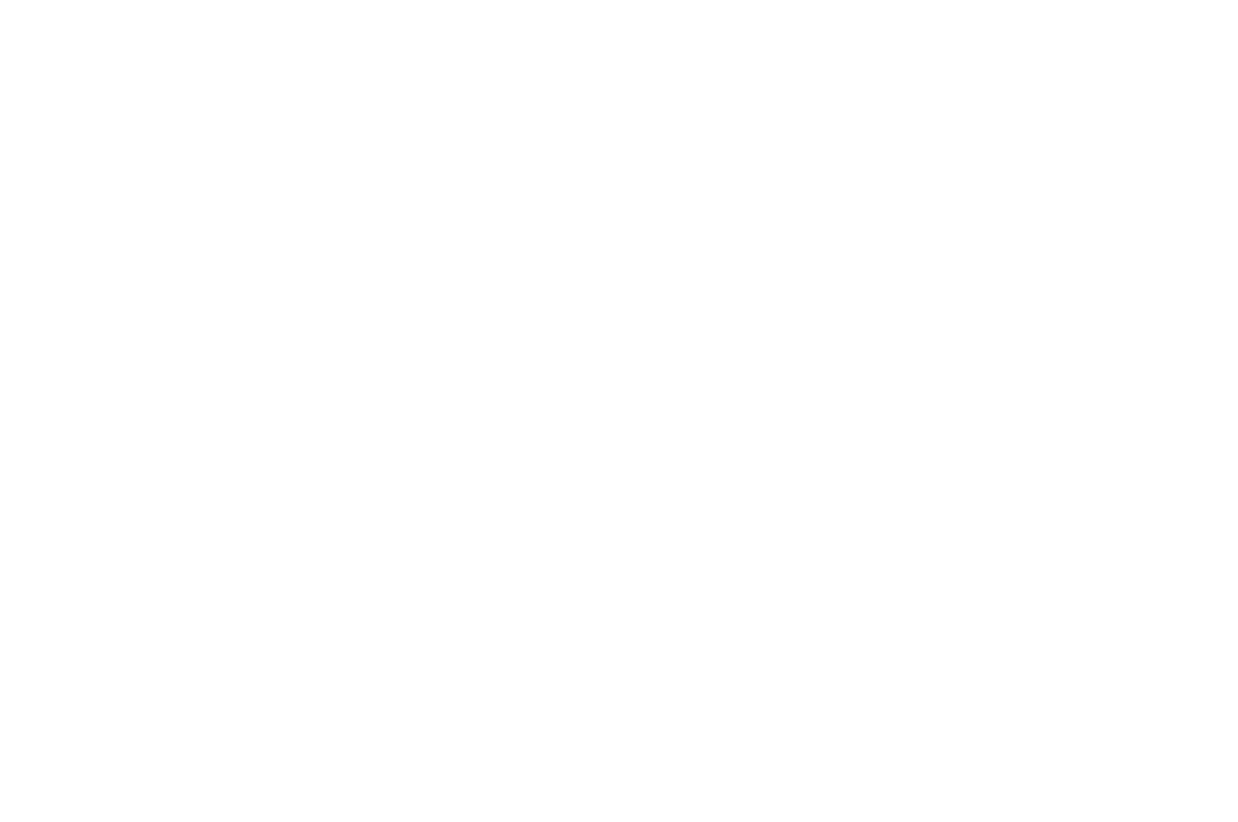 OFFICIAL SELECTION - Mill Valley Film Festival - 2019 (1).png