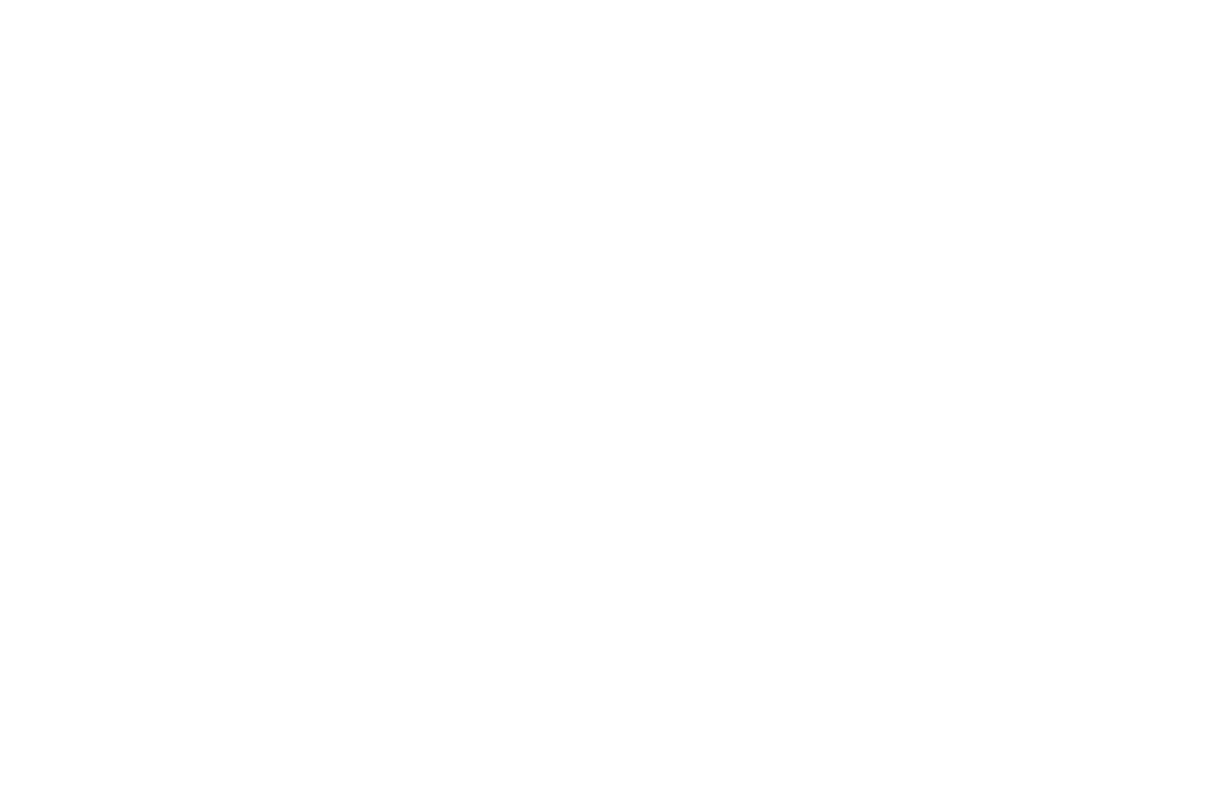 OFFICIAL SELECTION - Middlebury New Filmmakers Festival - 2019 (1).png