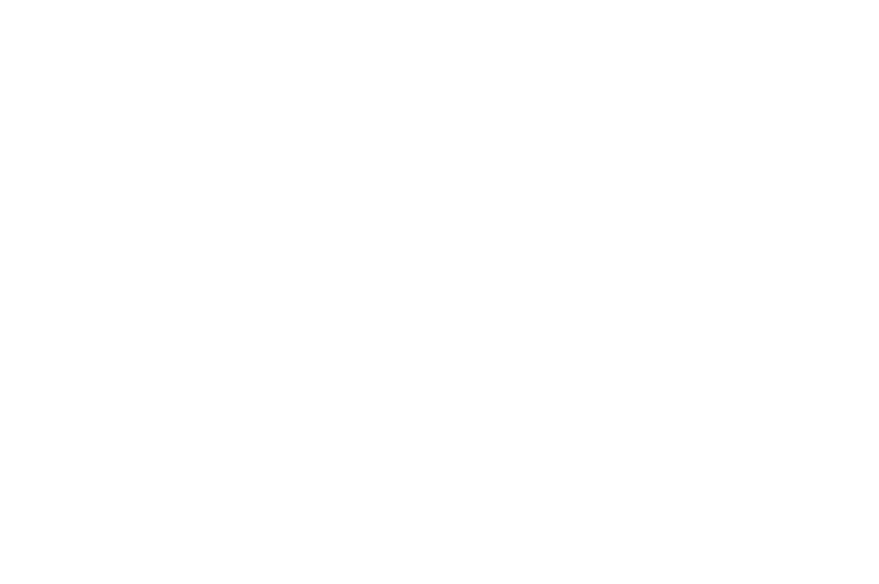 OFFICIAL SELECTION - Asian Film Festival of Dallas - 2019 (1).png