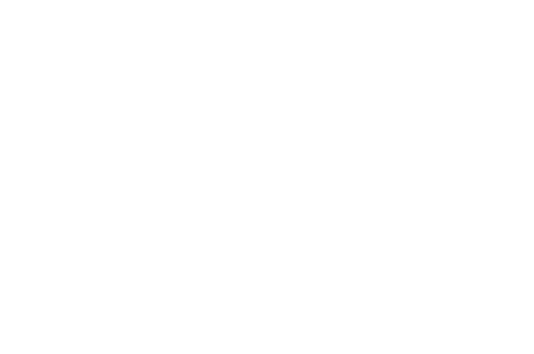 Best Feature Documentary - Stockholm Independent Film Festival - 2019 Nominee.png