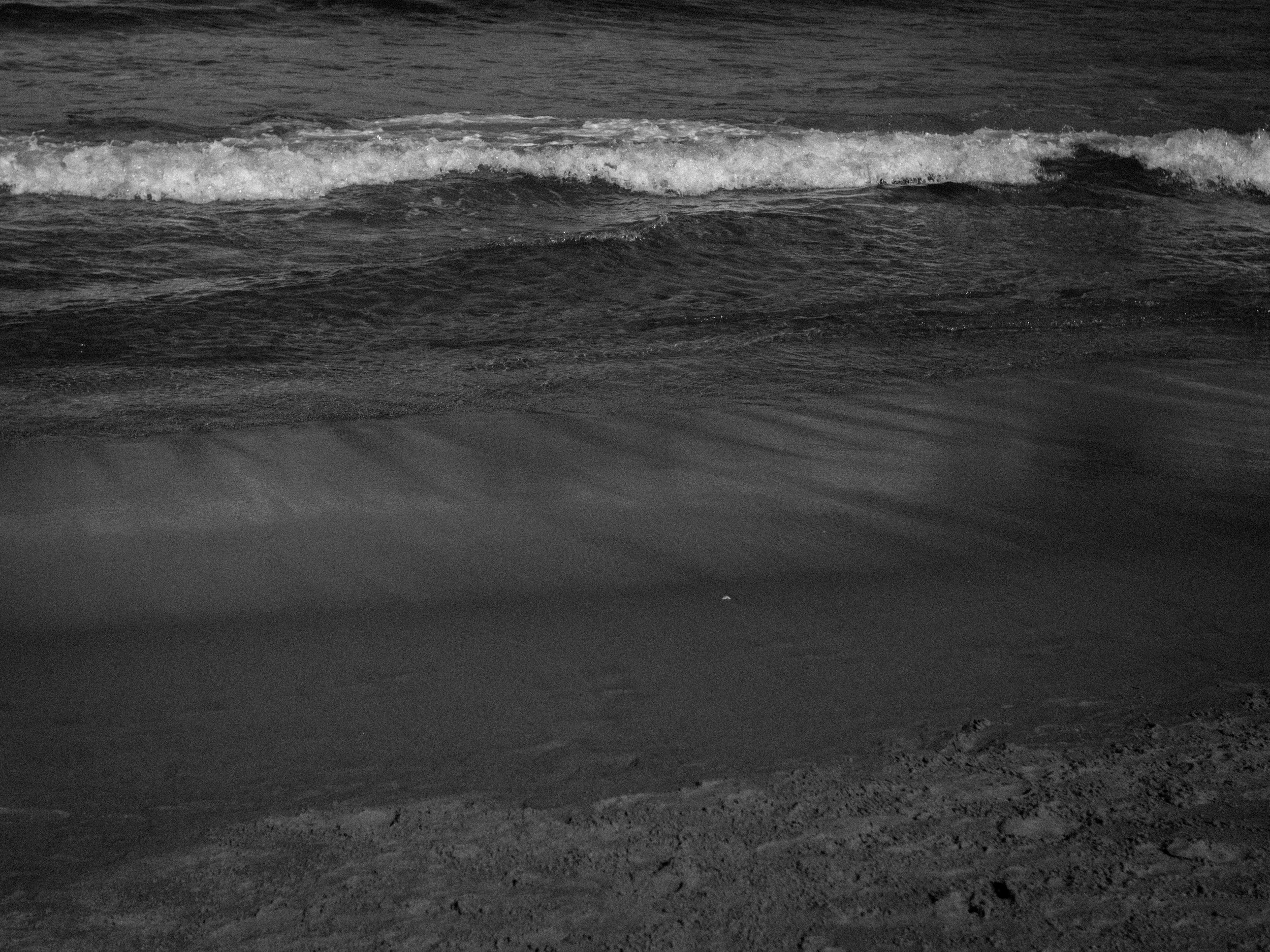 Kemara Pol - Bondi Beach Realness