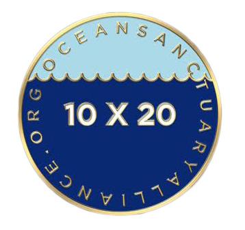 10X20.jpg