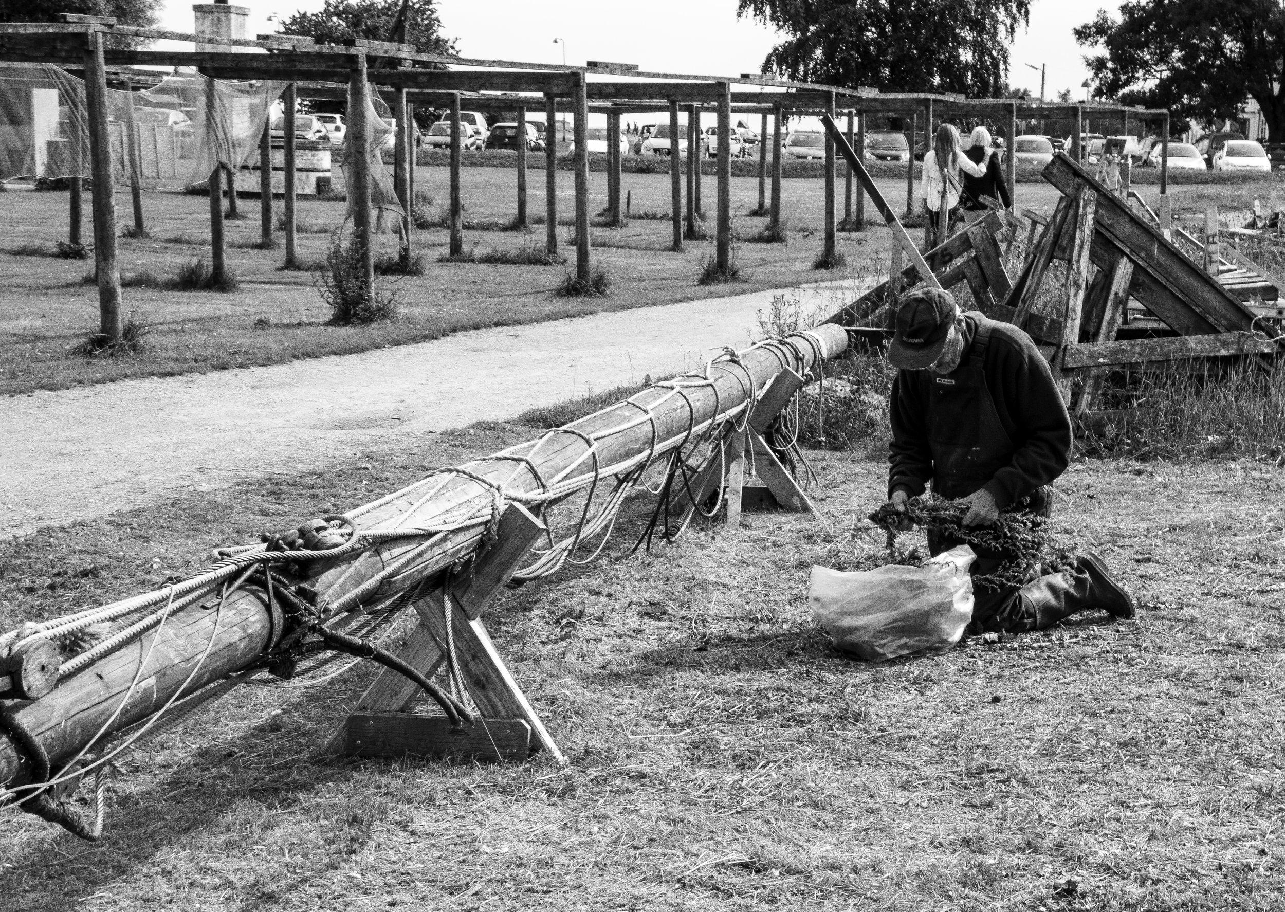 The Old Fisherman.jpg