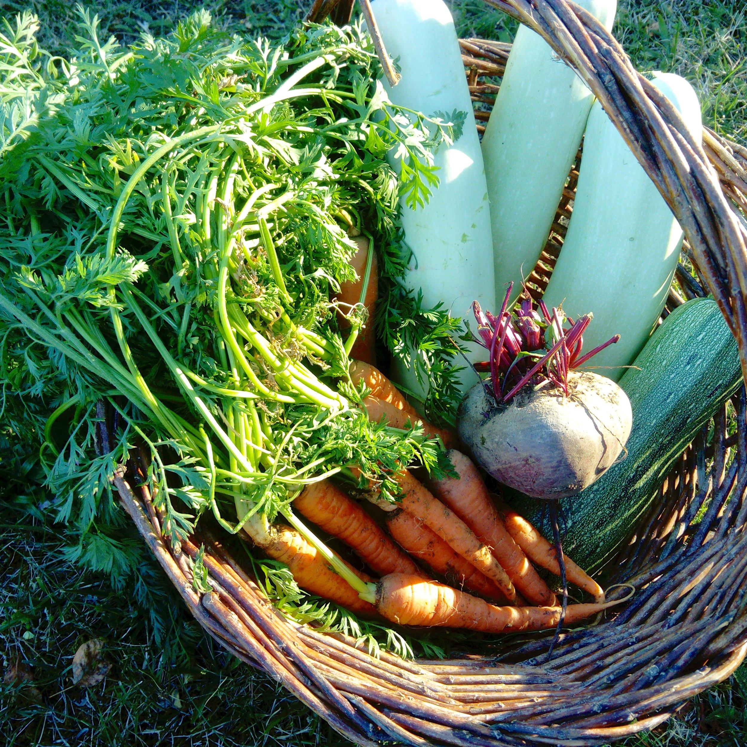 cuisine-vegetarienne-saine-healthy.jpg