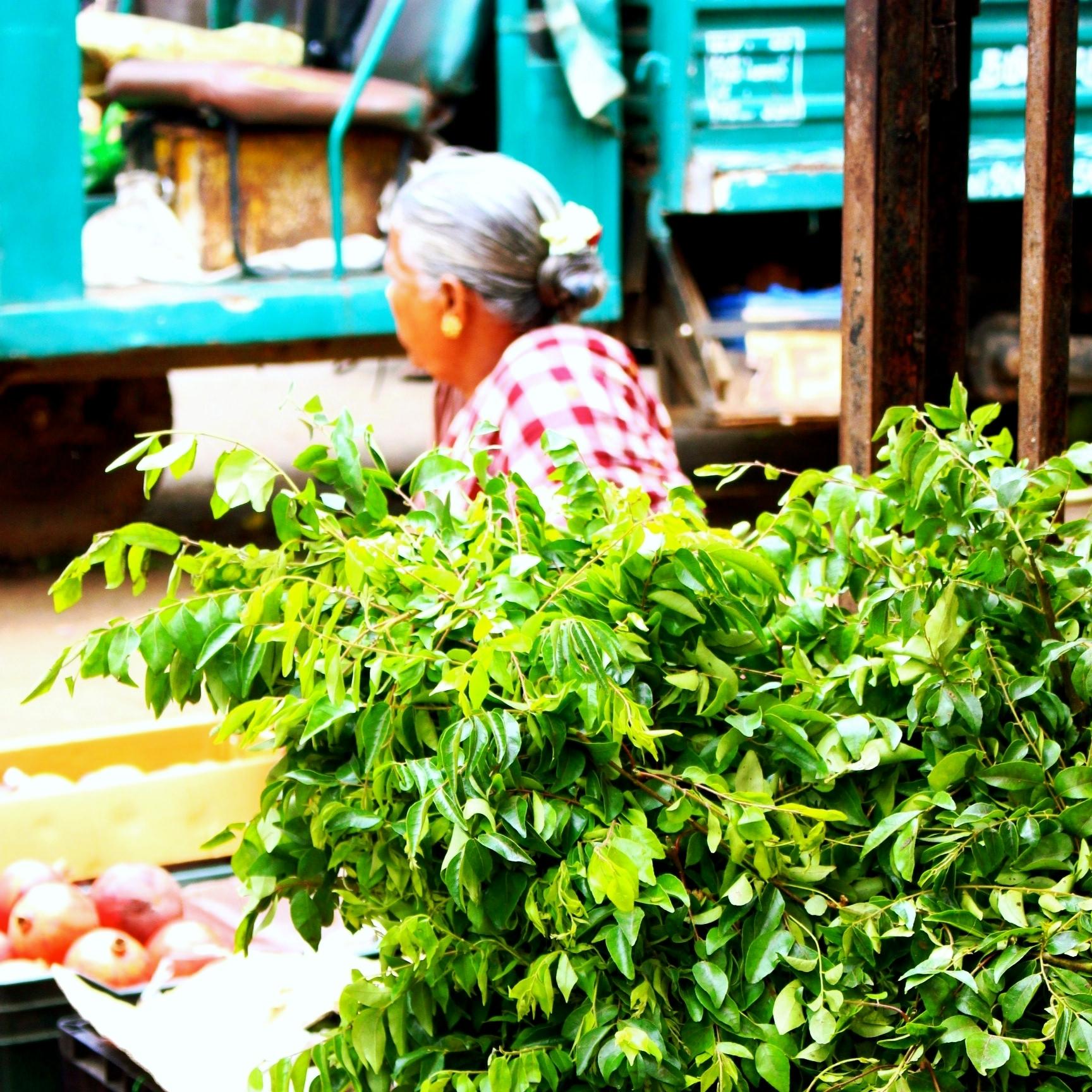 ayurveda-inde-feuille-de-curry.jpg