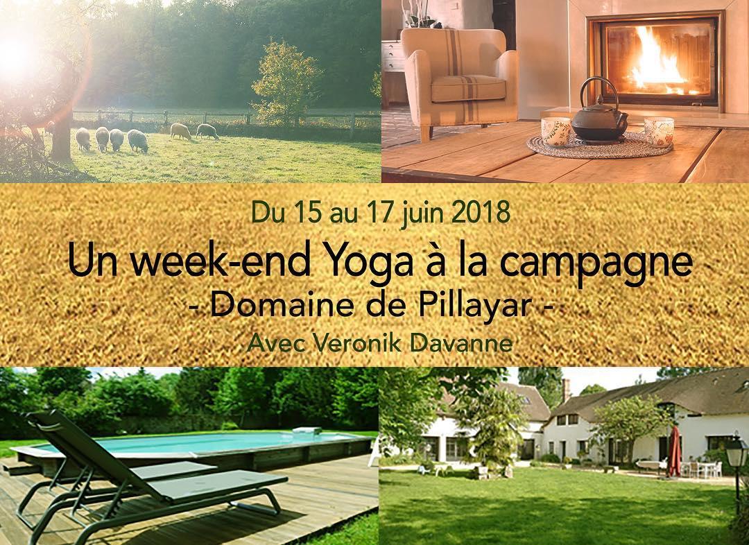 stage-yoga-veronik-davanne-pillayar-cook-me-green-france-franco-ayurveda.jpg
