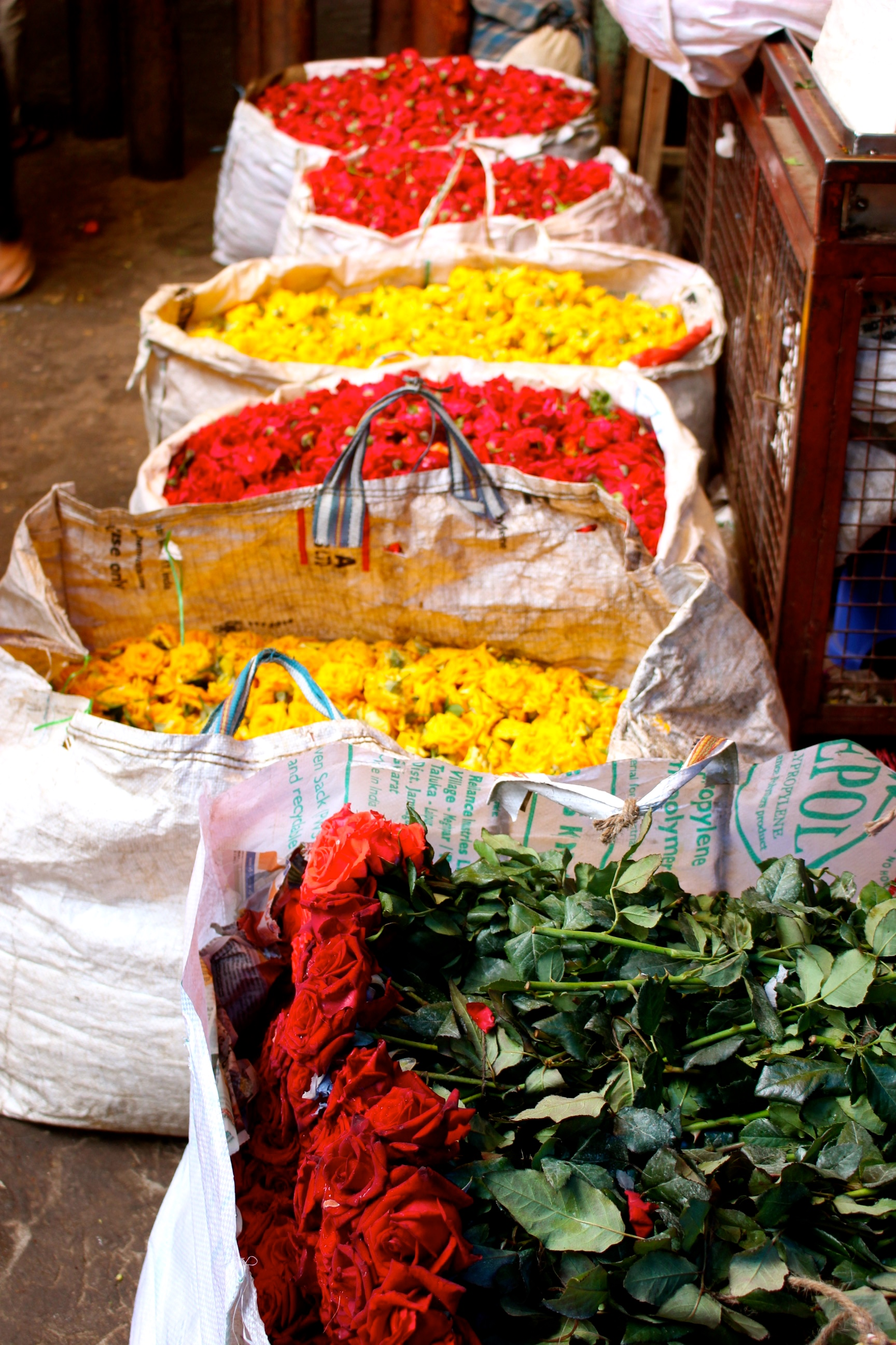 fleurs-inde-devaraja-market-mysore.jpg