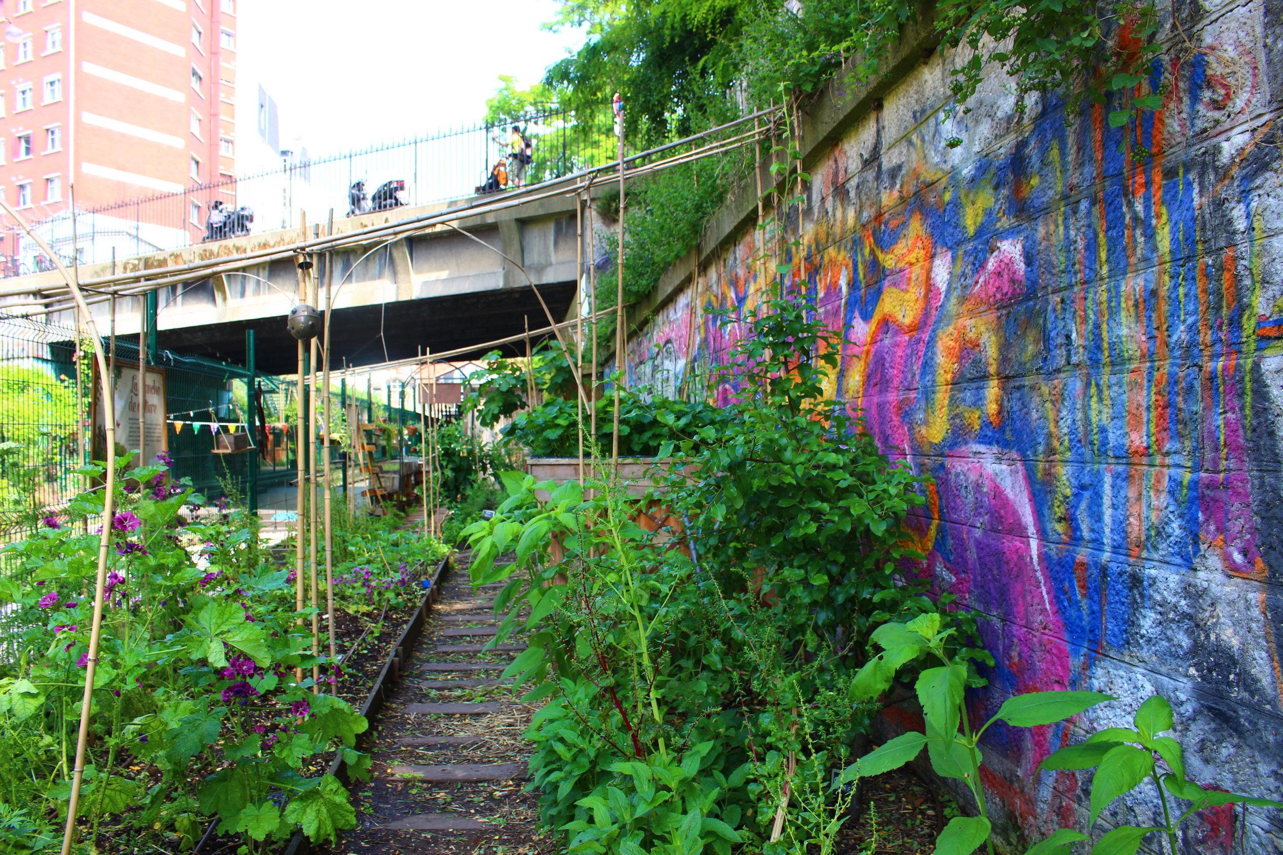 ferme-urbaine-agro-ecologie-paris-18.jpg
