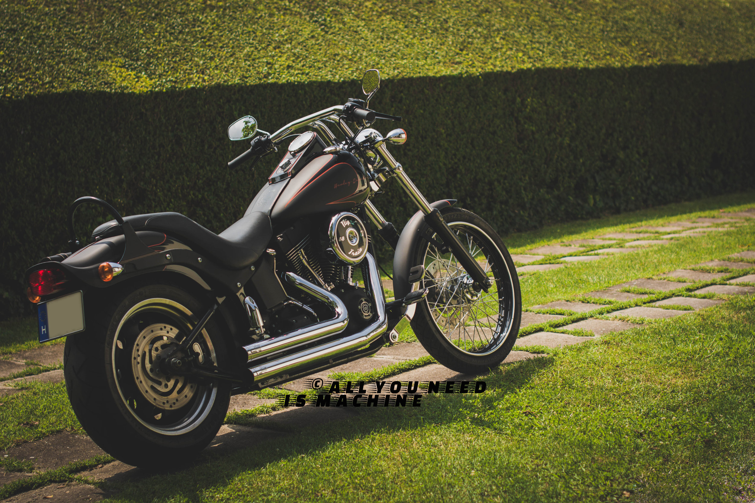 Harley Davidson Nigth Train From Hungary by Cipo Machine Choppers
