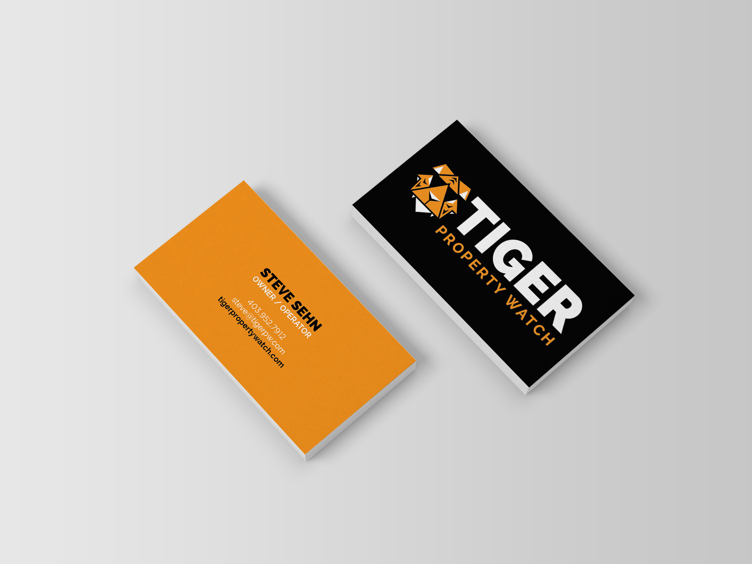 Tiger Business Card Mockups.jpg